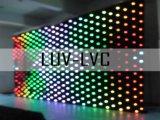 4 mx8 m (P20) LED-videogordijn/LED-visiegordijn (LUV-LVC)