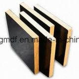 Madera contrachapada del anuncio publicitario del grado Bintangor/Okoume/Poplar/Hardwood/Eucalypt de los muebles