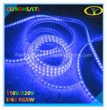 indicatore luminoso di striscia della flessione di 5050SMD RGBW LED con luminosità eccellente
