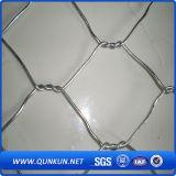 Горячая окунутая ячеистая сеть высокого качества шестиугольная