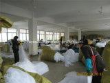 Malaria Zika haltbares langlebiges Insektenvertilgungsmittel behandeltes Moskito-Netz verhindern