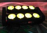 Lumière principale mobile légère de nuit de l'araignée DEL de l'usager 8X10W RGBW 4in1 DEL