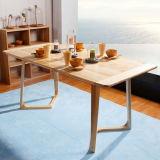 Plaza de la mesa de comedor de estilo moderno comedor madera maciza