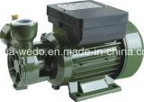 Pomp van het Water van Wedo dB-550A de Elektrische Schone voor Huis en Landbouw (0.75HP)