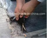 地下の防水のための修正された瀝青の屋根ふきシートを付着させている自己