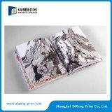 Catalogo Libro Magazine Brochure professionale Stampe