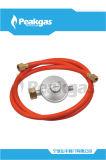 Régulateur de basse pression avec le tuyau -16 de Dvgw