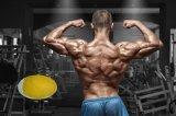 Le volume et découpage de dosage d'effet d'acétate de Steriods Trenbolone de muscle de gain