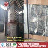 Matériel de volaille cultivant le système de ventilation de cage de couche d'oeufs