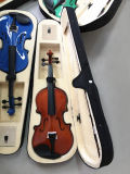 Violine 4/4 im Violinen-Fall mit Violinen-Bogen-Violinen-Harz