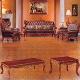 كلاسيكيّة جلد أريكة لأنّ يعيش غرفة أثاث لازم (301)