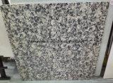 60X60 und 80X80 weißer Karara Baumaterial-Granit-Entwurf polierte glasig-glänzende Porzellan-Bodenbelag-Fliese
