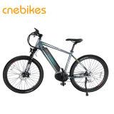 Bafang mediados Max Motor bicicleta eléctrica con batería oculto