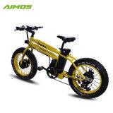 48V 750Wモーターを搭載する安い20inch脂肪質のタイヤの電気バイク