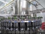 машина питья молока польностью автоматической бутылки любимчика 2000-36000bph горячая разливая по бутылкам