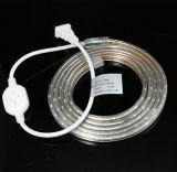 100m/Roll 60LEDs/M 3528 소형 LED 지구 온난한 백색 색깔
