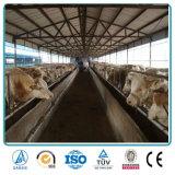 Construcción ligera de la granja de la estructura de acero del bajo costo de la buena calidad