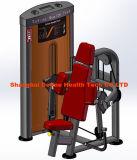 Fuerza comercial, profesional de la máquina de fitness, gimnasio, el cuerpo-máquina de construcción, Máquina Curl bíceps-DF-8004
