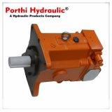 可変的な変位の油圧モーター