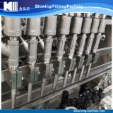 Máquina de embotellado comestible automática del petróleo de soja de las ventas de fabricante