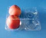 Bandeja disponible de la fruta de la cubierta caliente de la venta de dos PCS Apple