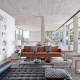 Sofá moderno do couro da mobília da sala de visitas do lazer (L018)