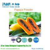 La ISO de polvo de la fruta de papaya natural orgánico 100% de jugo de papaya en polvo, con el mejor precio