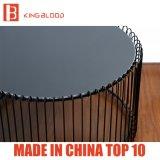 La mesa de centro redonda elegante fijó para la sala de estar