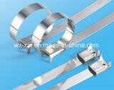 Il PVC ha ricoperto 301 fascetta ferma-cavo L tipo dell'acciaio inossidabile