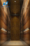 Residental 가정 상승 및 엘리베이터를 위한 Toyon 별장 엘리베이터