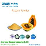 ISOの最もよい価格の自然な有機性パパイヤのフルーツの粉の100%年のパパイヤジュースの粉