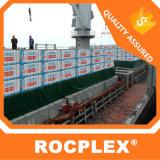 Madera contrachapada Shuttering 17m m del modelo del arroz