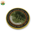 自由な習慣は販売のための旧式な金の金属の硬貨を見本抽出する