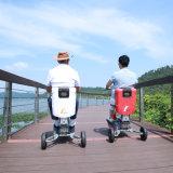 Besichtigenrad-faltbarer elektrischer Roller des arbeitsweg-drei