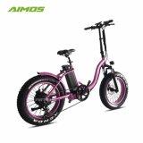 يطوي [إبيك] جبل درّاجة كهربائيّة مع إطار العجلة سمين