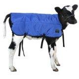 Manta de gado bovino de vitelos