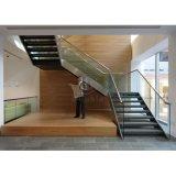 O corrimão moderno Mable de cerco de vidro do aço inoxidável da escada pisa escadaria