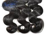 Бесплатная доставка оптовой Бразильский орган волна Реми Virgin волос человека