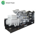 gruppo elettrogeno diesel 14kVA alimentato da Perkins Engine (BPM11)