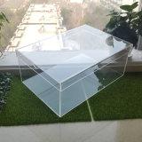 투명한 아크릴 운동화 상자 플렉시 유리 단화 전시 상자