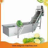 과일 세탁기