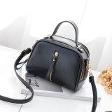 De populaire Partij van de Avond de Handtas van de Vrouwen van de Zak van Dame Crossbody Bag Fashion Shopping Totalisator