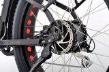 電気マウンテンバイクか脂肪質のタイヤのバイクまたは雪の電気バイク