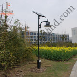 IP65 5W LED Solargarten-Licht (DZ-TT-222)