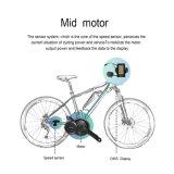 Ebike mittlerer Antriebsmotor-Installationssatz 8fun 350W mit LCD-Bildschirmanzeige