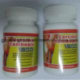 Le garcinia cambogia Extract slimming capsule