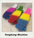 بلاستيكيّة سنت سمية لوح التزلج مصغّرة في لون متعدّد