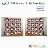 High-Power COB Urano 16 LED de luz para crecer las hierbas