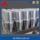 Peças sobresselentes fazendo à máquina de giro do aço inoxidável do CNC da precisão chinesa