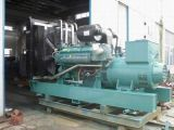 Angeschalten durch Dieselgenerator elektrisches Genset Cummins-700kw